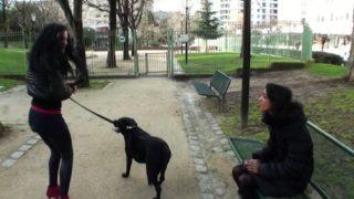 se faire baiser devant des chiens